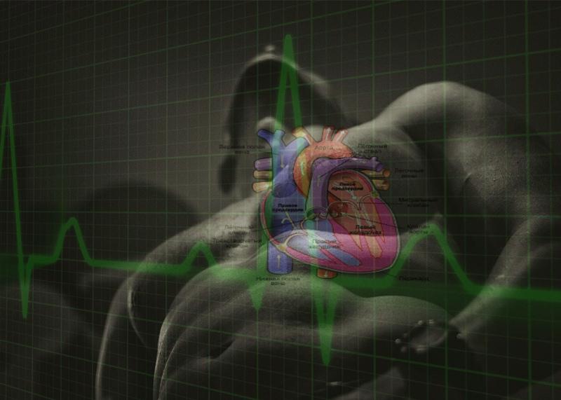 10 простых советов, как сохранить сердце здоровым